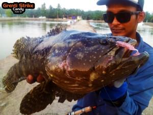 wawan-grouper-on-ultralight