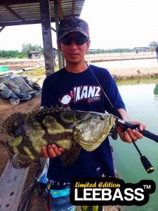 muhdameer-limat-grouper-on-ul