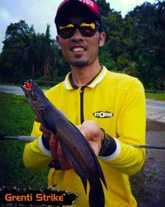 hasil ikan bujuk oleh Zafri Angler