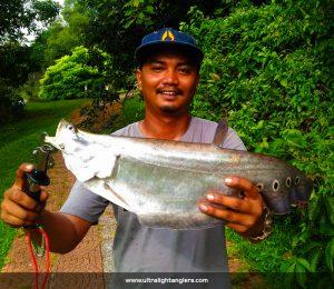 belida-ultralight-fishing-Khairol-Pokcik-Kantin-softbaits