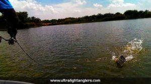 kanicen-nix-ultralight-fishing-clown-fish-ikan-belida