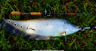 komander-lemon-tea-ultralight-fishing-kanicen-nix-sengat-ultralight-rod