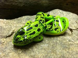 buzzbait-blade-frog