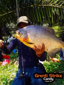pacu-on-ultralight