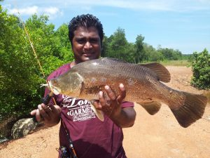 siakap-barramundi-3.2kg-1lb-on-ultralight