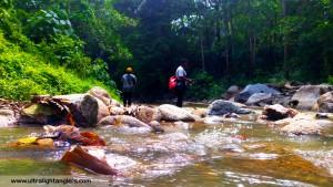 memahami-habitat-pemakanan-ikan