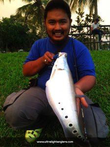 belida-Fahmi-Salleh-ultralight-game-kanicen-nix