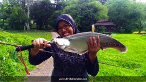 belida-ultralight-game-Khairol-Pokcik-Kantin-softbaits-first-timer-softbaits