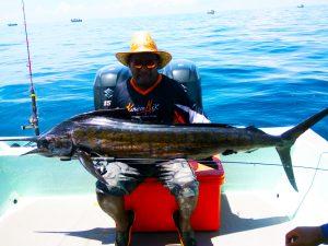 kanicen-nix-sail-fish-with-ultralight-4lbs-25kg-rompin-pahang