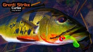 Grenti Strike - Curlee